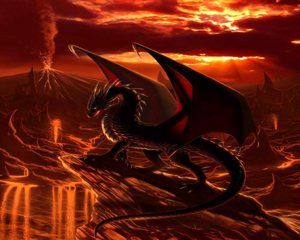 je suis le symptome des dragons