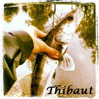 Histoires d'un passionné de pêche !