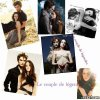 twilight-x-cullen486