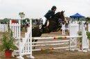 Photo de honneyhorses