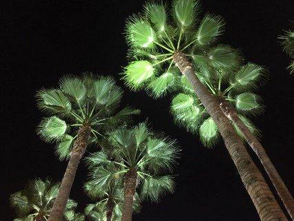 Instagram Bill Kaulitz - 05.11.2016