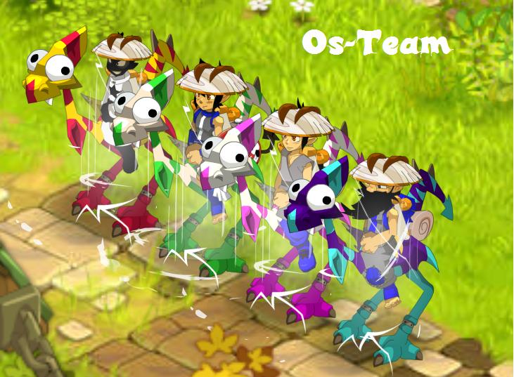 Os-Team