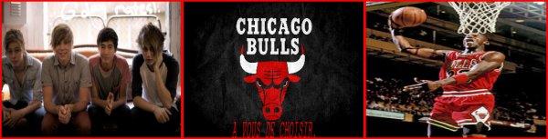 University Chicago Bulls - INSCRIPTIONS.