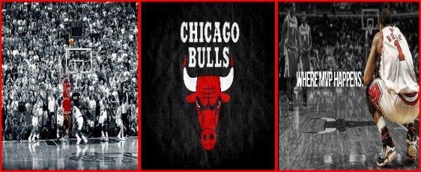University Chicago Bulls - AVATARS OBLIGATOIRES.
