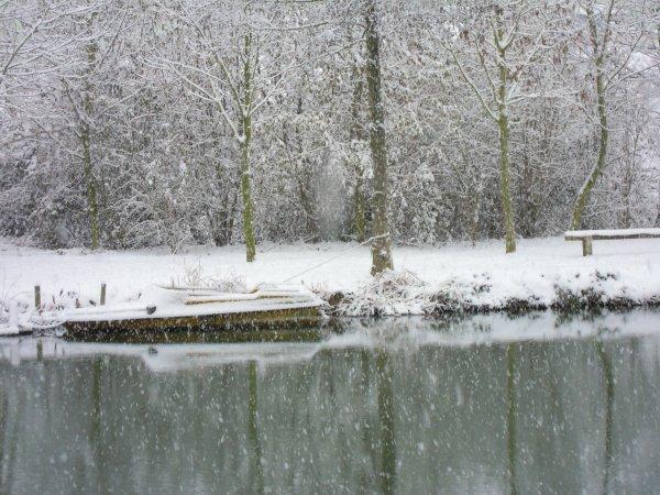 Superbe cette image d'étang , ca handicap l'hiver, mais c'est tellement beau !!
