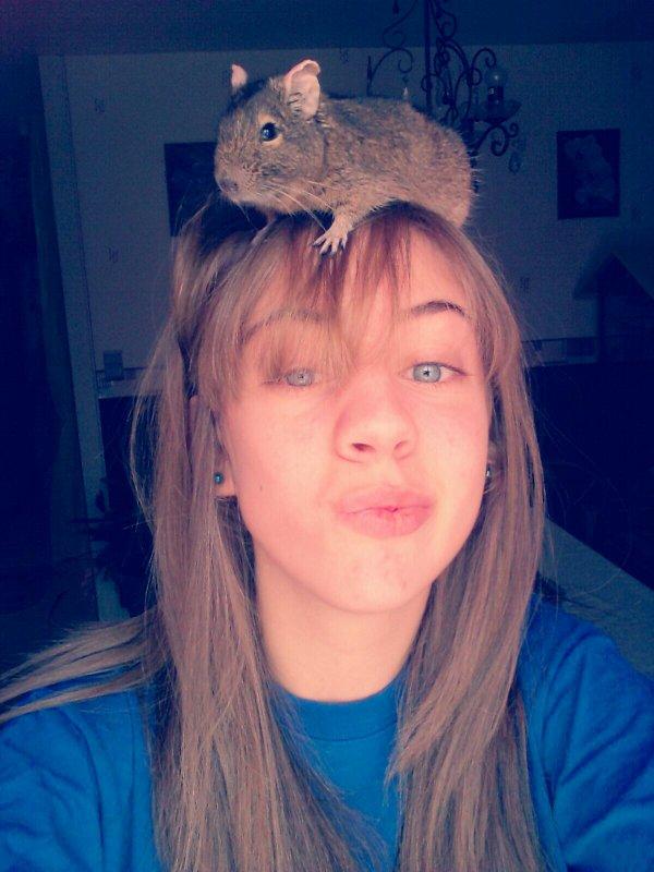 Ratatouille ♥