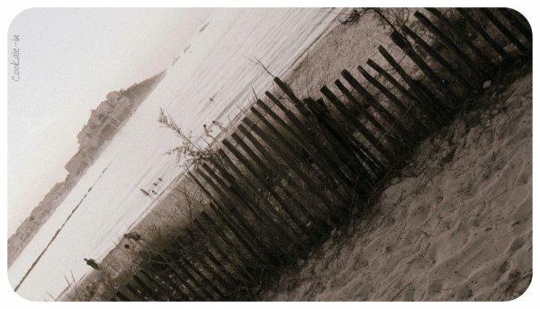 . Summer 78
