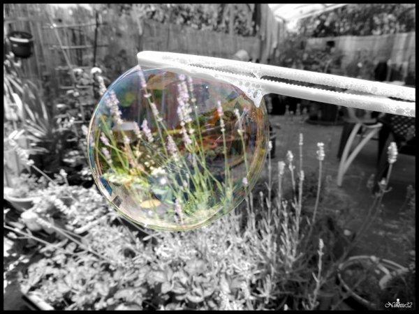 Petite bulle