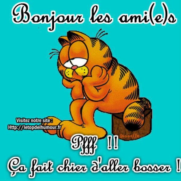 BONJOURS MES AMIES....