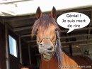 Photo de Gaspar-125