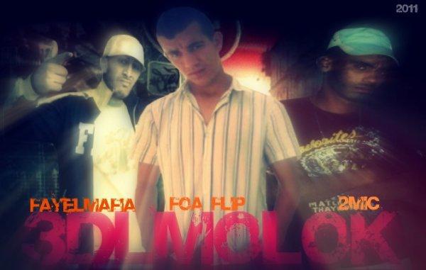 FoaFlip