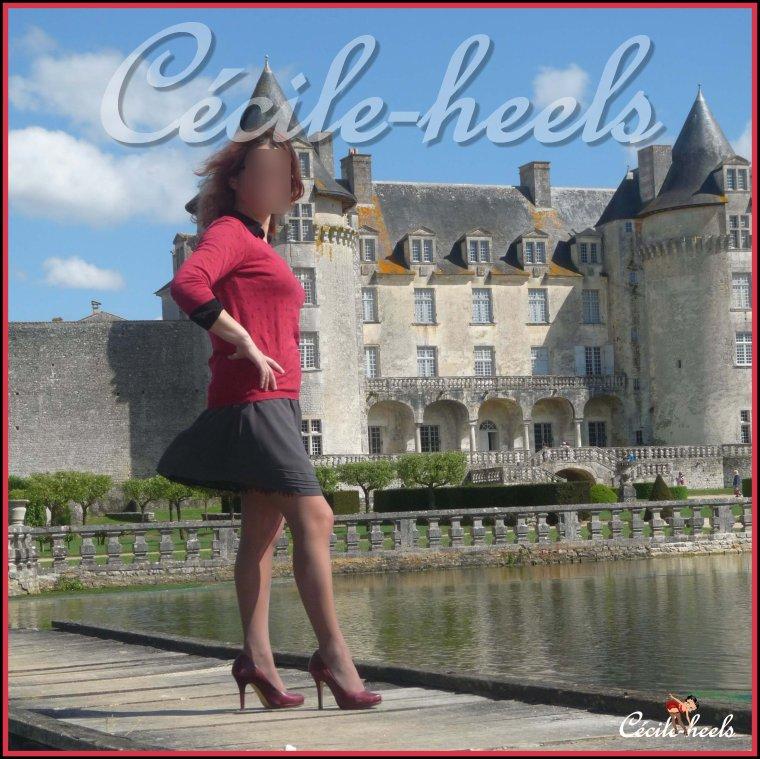 Château de la Roche Courbon,