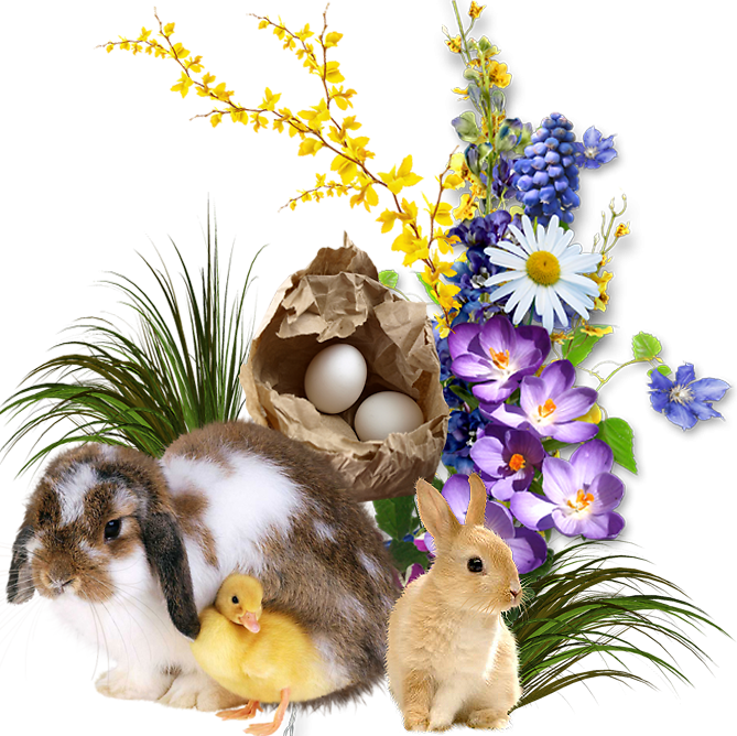 Joyeuses Pâques les ami(e)s