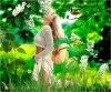 Tu es mon printemps et ma joie de vivre