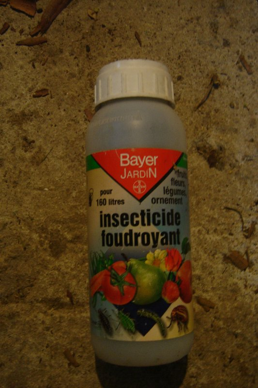 Insecticide foudroyant