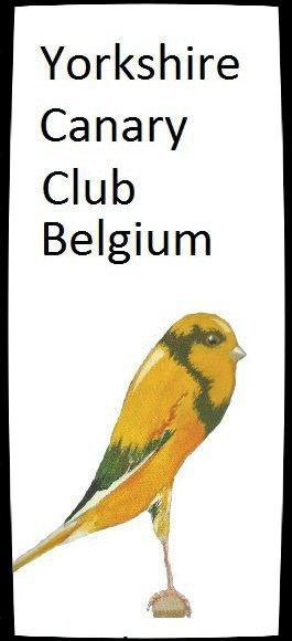 CLUB  Y.C.C.B  _   CLUB  B.C.B