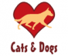 cats-dogs20