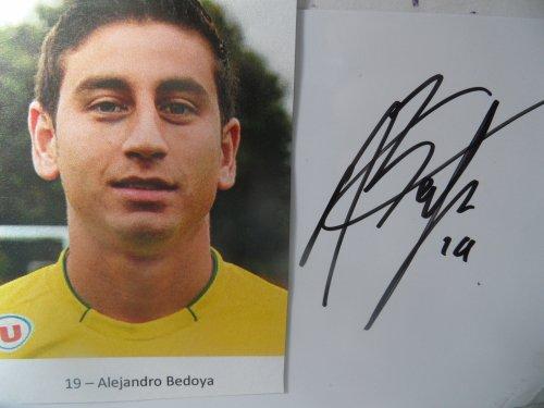 Alejandro B E D O Y A