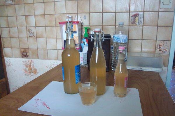 notre jus de pommes fait  maison ce matin avec pommes du jardin avec l'extracteur de jus à la vapeur