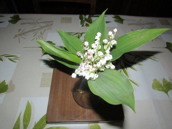 le dernier bouquet de muguet que j'ai cueilli hier