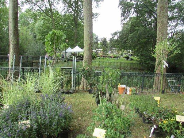 fleurs en seine  aux mureaux la fête des plantes et du jardin