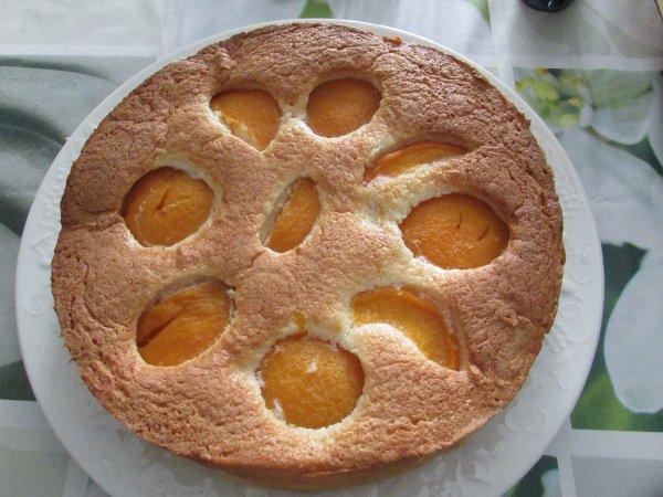 j'ai testé un gâteau pêches au sirop et noix de coco recette sur le site nicolepassion.canalblog.com