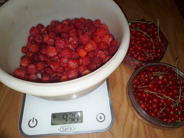 j'ai ramassé des fruits rouges:594 g groseilles et 937g de framboises de mon jardin