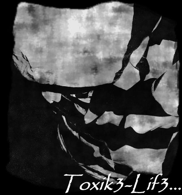 Toxik3-lif3.skyrock.com
