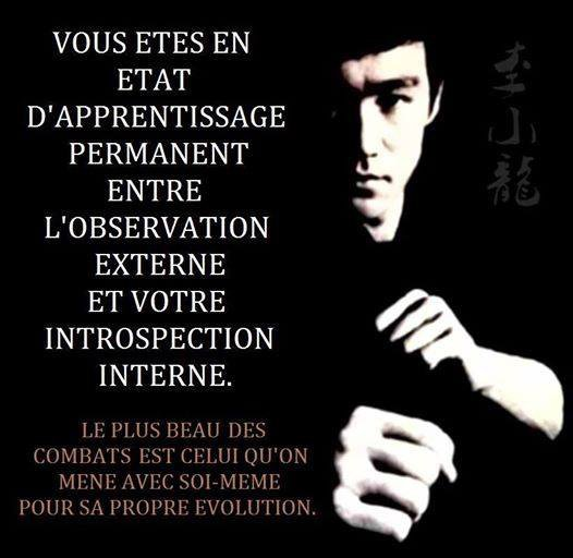 -- Evolution --