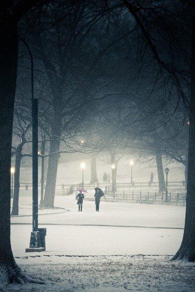"""le Central Park Parisien - """"le Park de la Courneuve"""" en Seine st denis 93 (Paris)"""