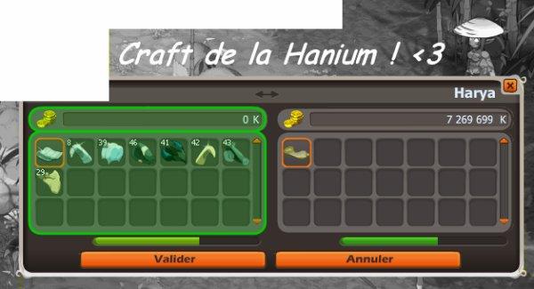 Ceinture Hanium ! <3