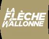 (17)  -  LA  FLECHE  WALLONNE  (BELGIQUE)