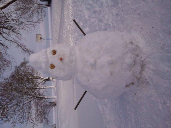 La neige du 19/12/2010