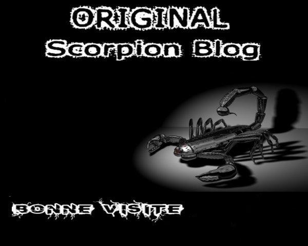 ORIGINAL SCORPION BLOG