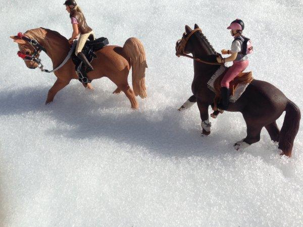 Randonner dans la neige
