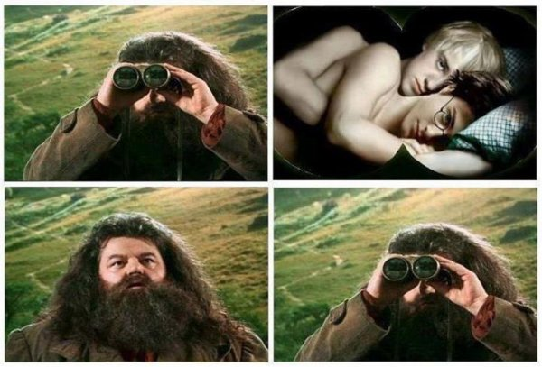 Images WTF : special Harry Potter
