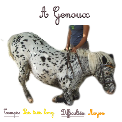 Exercice n°3 → A Genoux. :-)