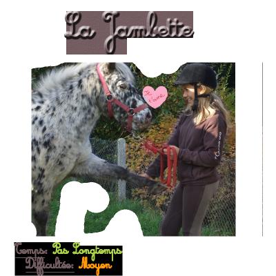 Exercice n°12 → La Jambette :-) .