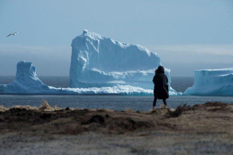 Un iceberg s'échoue au large de Terre-Neuve au Canada