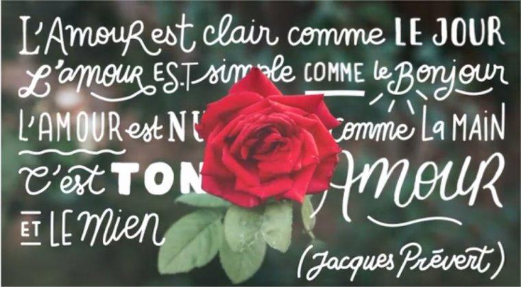 L'amour est clair comme le jour Aujourd'hui fête de l'Amour!