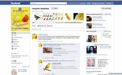 Canari-tunisien sur facebook