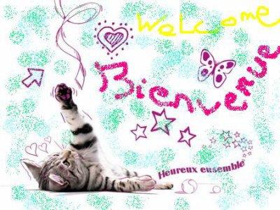 Bienvenue !!!