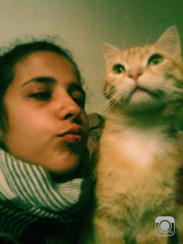 Stic Mon Chat