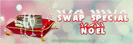 Swap Noël 2012 -2013