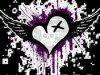 Amazone-Love