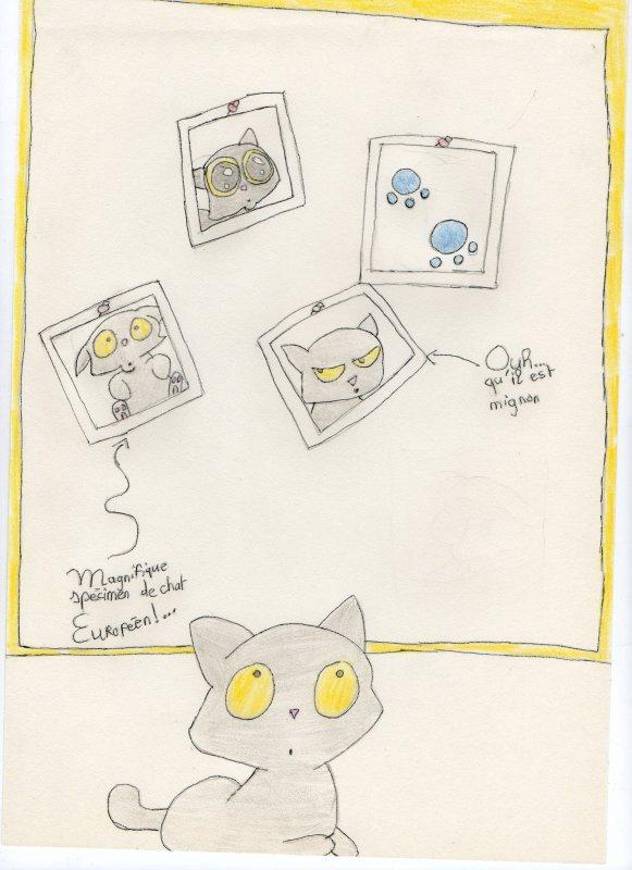 moi? Je fait un blog pour partager mes dessins!!!