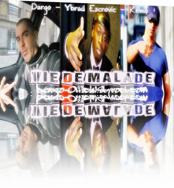 Carriere Fantôme / VIE DE MALADE ! FEAT YBRAD ESCROVIC & KRIMO  (2010)