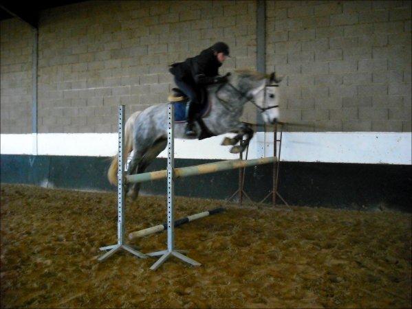 centre equestre naveil