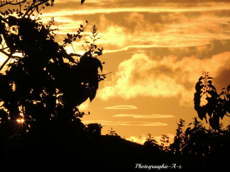 « Le soleil couchant est un artiste de génie. »