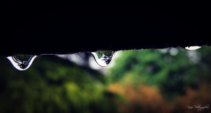 « La pluie tombe comme nous tombons amoureux : en déjouant les prévisions. »